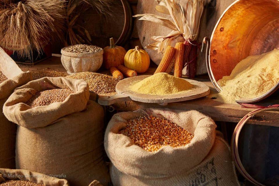 Molino degli Euganei, farine da grani antichi e bottega delle eccellenze euganee